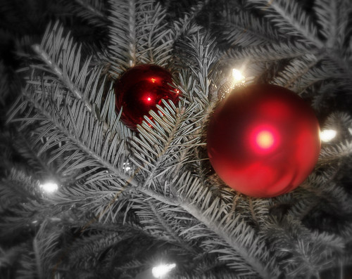 Christmas Ornament on Fir Tree