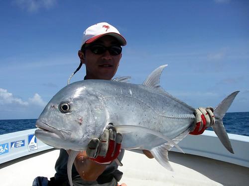 Trevally Gigante pezca en Palau