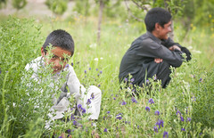 120616-A-ZU930-002 (ken_scar) Tags: cjtf1 afghanistan rceast kenscar 7thmpad operationenduringfreedom soldier soldiers globalwaronterror usarmy army coverphoto province district battlefield mission frontlines armyphoto militaryphotograph armyphotograph armyphotographer militaryphotography pao photojournalist armypicture warphotograph warphotography isaf regionalcommandeast bamyan farmers agriculture afghanpotatoes afghanfarmers russiantank oldtank abandonedtank taskunitcrib newzealandarmy bamyanprt provincialreconstructionteam afghanboy afghanchild boy smile heartsandminds nativeboy bamiyan afg