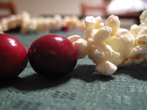 Popcorn and Cranberry Garland by Gare and Kitty on Flickr