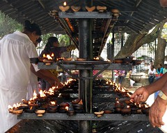 Offerings of Light (IMG_5072b) (Dennis Candy) Tags: srilanka ceylon daladamaligawa temple kandy buddhism religion oillamp templeofthetooth worship light offering