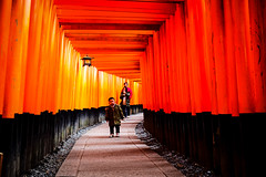 20161130-L1000886 (Mac Kwan) Tags: leica travel japan kyoto m240 color street