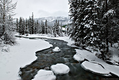 Just outside the Village of Lake Louise (ethervizion) Tags: snow canada mountains water river alberta banff lakelouise bowriver banffnationalpark villageoflakelouise