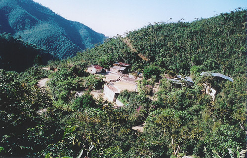Finca Vista Hermosa Guatemala
