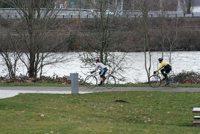 Yellow Rider