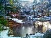 "Japanese Garden.    www.eikaiwa-pelican.jp (Steve-kun) Tags: camera bridge autumn trees winter snow cute art canon garden japanese photo sony stephen jp nagoya 日本 aichi japan  名古屋 flickrcom dreamjournal photoghraphy abigfave stephendraper anawesomeshot favoritegarden httpwwwflickrcomgroupsforeveryone 名古屋 日本 nagoyacity ""名古屋 都市"" templesshrinescastlesofjapan stevedraperpictures draperphotography stephendraperphotography ス千ーブ 日本 flickrjp 日本 ""日本 flickrflickr jpcom"