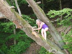 Tarzania (awolpix) Tags: cove bartons
