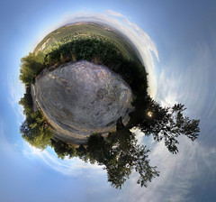Planeta Olivo