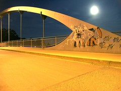 whale (My Little Johnny Rotten Pony) Tags: bridge moon germany highway grafitti gap hannover full whale dimage a2 wal