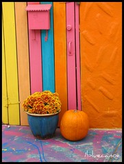 The Gate (1bluecanoe) Tags: ca favorite composition wow pumpkin october colorful 2006 explore 2550fav coronado explored mywinners mywinner artlibre 1bluecanoe colorphotoaward impressedbeauty coloredphotoaward goldenphotographer diamondclassphotographer flickrdiamond bachspicsgallery 100commentgroup