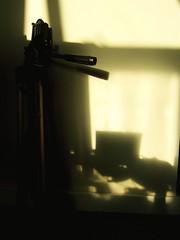 (yuki*) Tags: shadow sunlight tripod