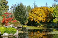 Van Dusen Gardens (rldock) Tags: autumn vancouver vandusengardens favoritegarden