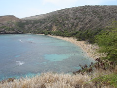 Hanauma Bay (M Kawamoto) Tags: hawaii oahu hanaumabay