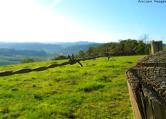 Natureza (josianevargas) Tags: santa verde canon paisagem cu catarina arame farpado imbuia
