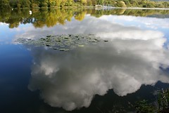 clouds of reflection (algo) Tags: white green water clouds reflections photography interestingness topf50 bravo searchthebest topv1111 topv999 explore lilies algo interestingness3 wendoverlake explore3 outstandingshots abigfave generouscomments