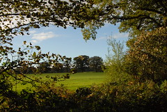 Country Walk (Vic and Al) Tags: relax tring spa champneys