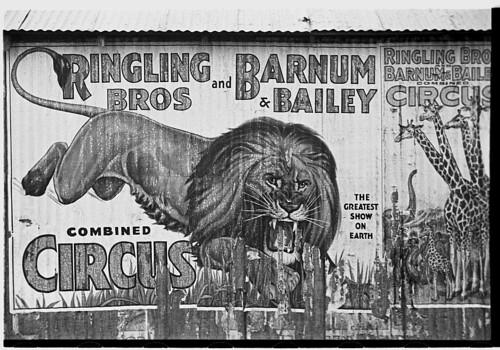 Barnum And Bailey. Barnum amp; Bailey Circus