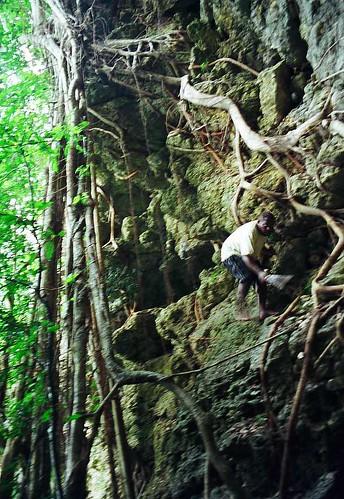 Way to Hell - Jungle, Vanuatu