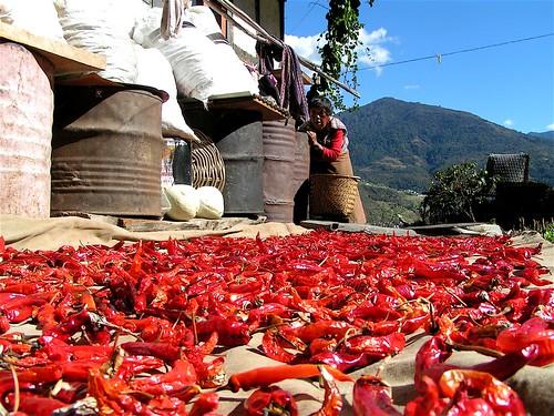 Chilis in Bhutan