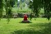 La dame en rouge (@rno) Tags: red art nature rouge photo interesting meditation reflexion photograpy pensées interessare elinteresar interessieren 興味を起こさせること interessar