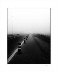 Desolation / Soledad (tmuriel67) Tags: monochrome abstract conceptual niebla mist fog blackwhite blancoynegro lineas