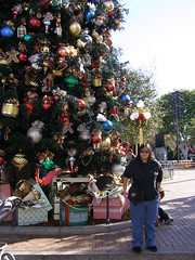 Disneyland in December (2)