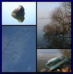 Arresø Collage (Kirsten M Lentoft) Tags: blue lake tree birds denmark boat fdsflickrtoys arresø arresoe momse2600 kirstenmlentoft