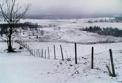 JURA - Chapelle des Bois (@rno) Tags: winter white mountain snow art montagne photo interesting hiver jura neige foret photograpy interessare chapelledesbois elinteresar interessieren skiskiing 興味を起こさせること interessar
