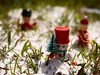 Christmas Time in Spring (Cyron) Tags: christmas snow yard toy photo snowman flickr decoration flickrimportr 2006 zuiko cyron zd 35mmf35 35mmmacro35 1t1wdecoration