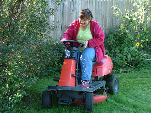 Used Lawn Mowers 101 - LawnMania.com
