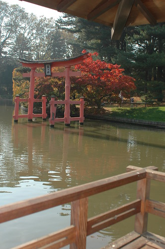 Torii seen from the Viewing Pavilion in the Japanese Garden