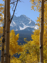 Eagles Nest (Jesse Varner) Tags: autumn mountains fall forest rockies golden colorado 2006 september aspens aspen eaglesnestwilderness mountainsrockymountains gorerange elevation40004500m summiteaglesnest altitude4094m