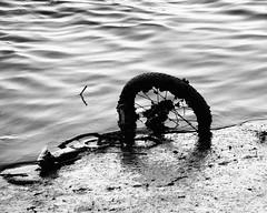 sunken dreams ((nz)dave) Tags: california old bw usa water bike bicycle america grey blackwhite mood sad mud buried monochromatic dirty menlopark ruined bayfrontpark sanmateocounty nikonstunninggallery abigfave framedprintgiventotimholtz