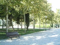 Parque Aljafera 3 (LDFF) Tags: 2006 zaragoza aljafera laalmozara