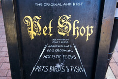 The original and best Pet Shop (dr_loplop) Tags: original plants dog pet pets fish birds sign shop garden sussex town foods board gothic best goods grooming fancy arrows script lewes holistic superlative