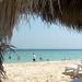 Qatar Inland Sea Beachfront 2