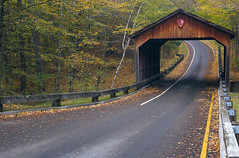 Covered Bridge on Pierce Stocking Drive (themikepark) Tags: bridge autumn fall nature leaves landscape d70 sleepingbeardunes amazingmich piercestocking