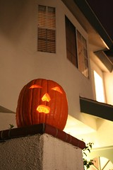 Hanging out in the moonlight (Sober Chick) Tags: halloween pumpkin jackolantern