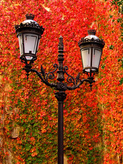 otoño - by Darco TT