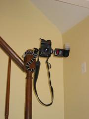 Joby Gorillapod Pro (S.D.) Tags: canon 2006 pro s410 canons410 joby november2006 gorillapod jobygorillapodpro