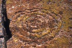 Tsankawi Petroglyph (bclee) Tags: new monument mexico spiral los circles national petroglyph alamos concentric rockart bandelier tsankawi nikoncoolscanived