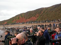 twitchers, Dawlish, 12-Nov-06 (Dave Appleton) Tags: crowd birding twitch devon twitching birders twitcher dawlish twitchers longbilledmurrelet brachyramphusperdix