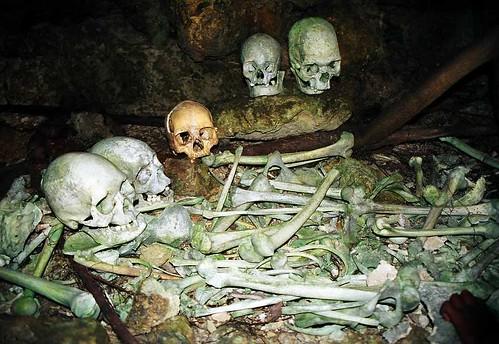 Canibal Skeletons