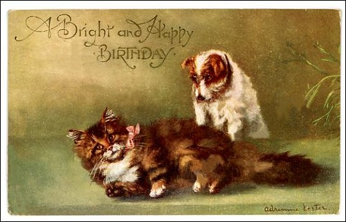 jrt bday pc cat by Sassy Bella Melange