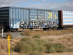 Skate all Cities (Patrick Dockens) Tags: arizona usa graffiti paint az i10 goldenwest pinalcounty trainpaint skateallcities