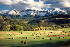 RRL Ranch and Mount Sneffels: Ridgway, Colorado (CO) (Floyd Muad'Dib) Tags: ranch autumn usa mountain mountains fall field america geotagged us colorado unitedstates united north peak southern co northamerica states hay peaks sanjuans hayfield bales bale haybale americanwest ridgway sanjuanmountains haybales ralphlauren ridgeway roundbales sneffels mtsneffels rrl ranches westernusa coth roundbale southerncolorado mountsneffels sanjuanrange coloradoranch sneffles ridgwaycolorado sneffelsrange ridgewaycolorado ridgwayco ridgewayco rrlranch geotaggedcolorado coth5