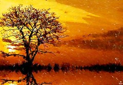 Eternal Sunset (Thiru Murugan) Tags: sunset panorama orange sun tree yellow photoshop paint shadows shades brushes eternal murugan thiru artbrush thirumurugan historyart thiruflickr