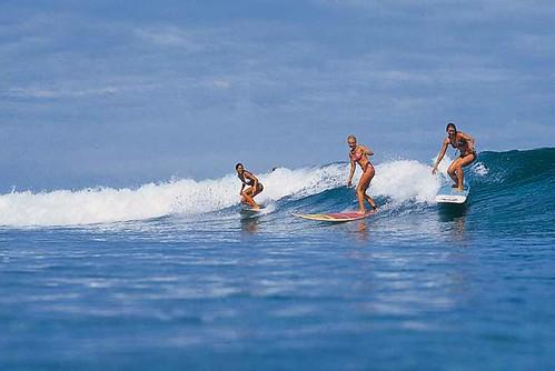 302819186 99a475cf8b Las olas eran nuestras  Marketing Digital Surfing Agencia