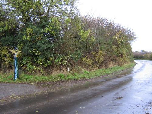 Tyler Hill road