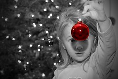 Christmas Ornament (seerich) Tags: christmas red tree slr 20d photoshop canon ball lights photo eyes photographer cs2 rich ornament richard digitalimaging 13twentythree minneapolisweddingphotographer stpaulweddingphotographer tc71circles seniorphotographer minneapolisphotographer minneapolischildrensphotographer stpaulphotographer minneapolisbabyphotographer seniorportraitphotographer 13twentythreephotography13twentythreephotographystpaulphotographerphotography thentythree bestseniorphotographer commercialphotographerminneapolis highschoolseniorphotographer minneaotaseniorphotographer minneapolisphotographers photographerinminneapolis photographerinstpaul photographerinstpaulmn photographerminneapolismn photographerminneapolisstpaul photographerstpaulmn seniorphotographerassociation seniorphotographerinternational seniorphotographers seniorportraitsphotographer stpaulphotographers weddingphotographerinminneapolis weddingphotographerminneapolismn weddingphotographerstpaulmn familyphotographerstpaulmn